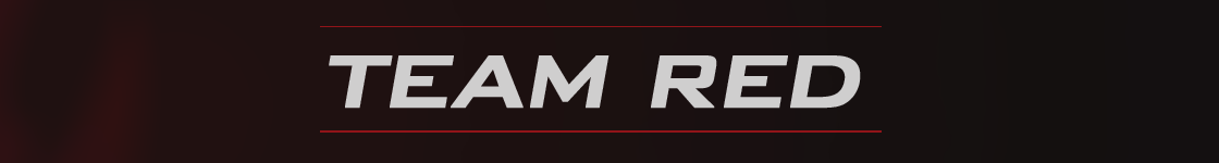 Rookie Banner RED